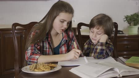 motive : Sister helping her brother with home assignment. Portrait of two cute children working on homework together. Family relationship. Stok Video