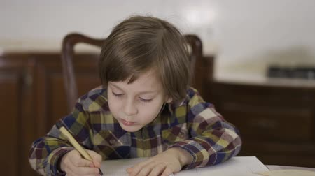 ders kitabı : The cute funny little boy in checkered shirt doing his homework sitting at home at the table. The schoolboy drawing in his notebook. Camera moving left and right