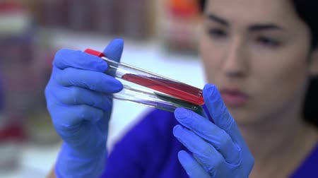 espécime : Woman holding test tube with blood sample in laboratory and looking at it. Vídeos
