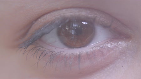 globo ocular : Close up of female eye. Macro detailed shooting. Woman blinking slowly, looking in camera.