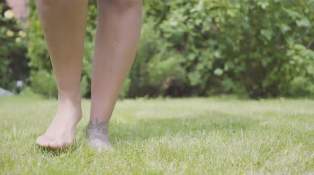 barefooted : Close up of female bare legs walking on the grass barefoot in the garden. Leisure outdoors, unity with nature