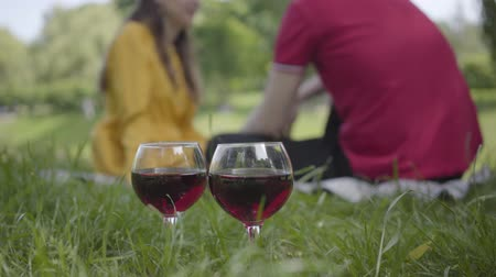 встреча : Glasses of red wine standing on the grass on the background of young man and woman in love making date and picnic in park. Close up
