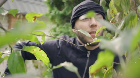 скрывать : Young caucasian thief in black clothes walking through the bushes before breaking into house. The man going to rob the rich house. Concept of offense against the law, burglary Стоковые видеозаписи
