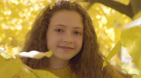 entre : Close-up of a smiling redhead caucasian girl in mustard sweater looking at the camera. Child with long curly hair and brown eyes standing in the autumn park between yellow leaves Vídeos
