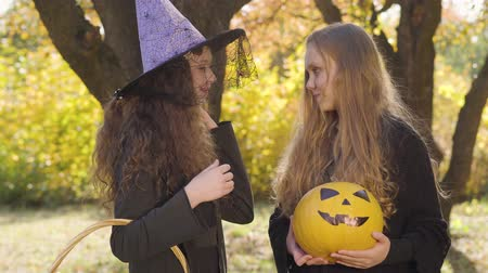 feiticeiro : Two little caucasian girls in Halloween costumes chatting in the autumn park. Redhead and blonde friends getting ready for the celebration of All Saints Night Stock Footage