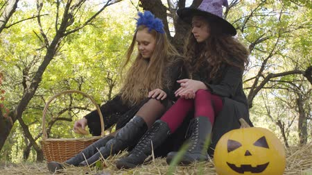 büyücü : Two pretty caucasian girls in Halloween costumes sitting in the autumn forest and chatting. Yellow pumpkin and straw basket laying next to the friends Stok Video