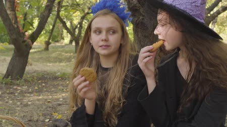 čarodějnice : Close-up of two cute caucasian girls in Halloween costumes eating cookies in the autumn forest and chatting Dostupné videozáznamy
