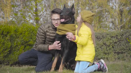 Portrait of Caucasian teenage boy and little girl sitting on green grass with beautiful graceful doberman in mustard scarf. Brother and sister spending time with their dog outdoors