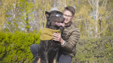 Beautiful black doberman in grey hat, mustard scarf and sunglasses sitting in next to teenage Caucasian boy on green grass. Young man in eyeglasses spending autumn day with his animal friend outdoors