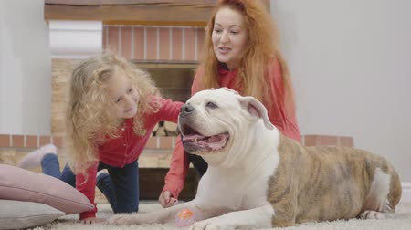 Pretty redhead Caucasian mother and playing with daughter with curly blond hair and dog. Happy adult woman and little girl having fun with pet bulldog at home. Family resting indoors