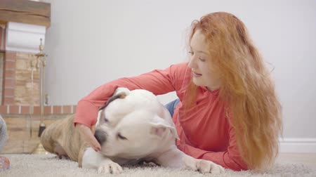 buldogue : Close-up face of white and brown bulldog sitting on the soft fluffy carpet. Young redhead woman in casual clothes talking to her daughetr at the background. Family resting with pet at weekends