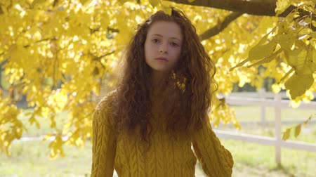 hardal : Pretty caucasian girl with long curly hair standing on the background of yellow leaves. Redhead child in mustard sweater resting in the autumn park Stok Video
