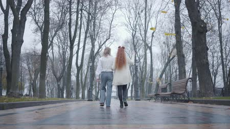 nobreza : Camera following young Caucasian man with long hair and redhead woman walking along the alley in autumn city park. Happy boyfriend and girlfriend having date outdoors. Couple in retro clothes Vídeos