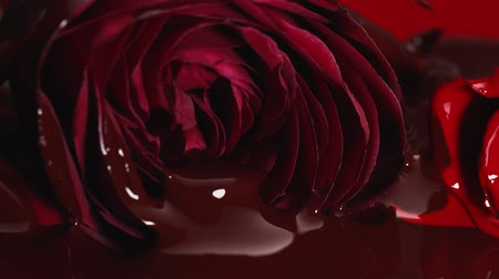 Chocolate on Red flower Stock Footage