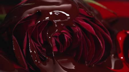 Chocolate on red flower Stock mozgókép