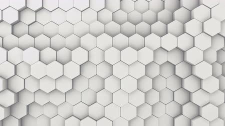 многоугольник : Abstract Hexagon Geometric Intro. Animated Surface Loop footage. Light bright and clean hexagonal grid pattern Background, randomly waving motion in pure white wall. Seamless loop 4K UHD FullHD.