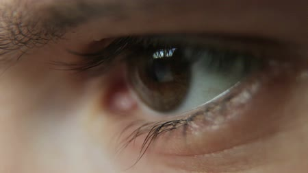 eye ball : Closeup Shot Of Boy Eye surfing internet Stock Footage