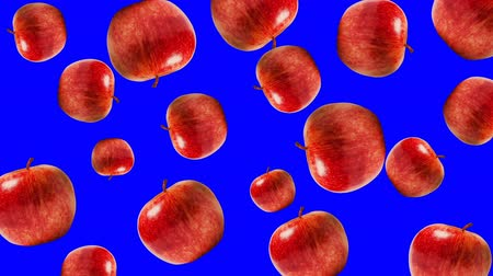kreskówki : Abstract colorful animation - red apple background. Apples rotating - seamless loop.