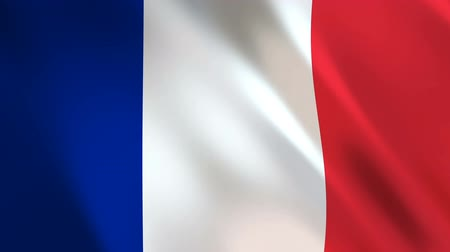 континентальный : France Flag waving in the wind - looped animation background. Стоковые видеозаписи