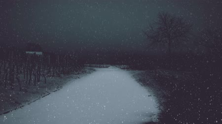 Snowing in the dark landscape