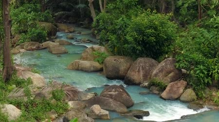 ribeiro : Beautiful river in the forest. Thailand Stock Footage
