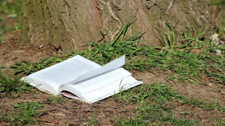 página : wind turned the pages of the book