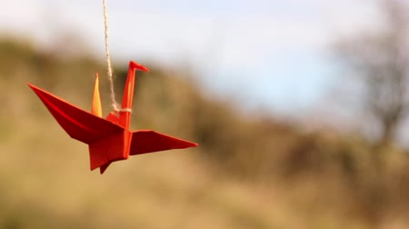 grua : Origami, the art of origami Stock Footage