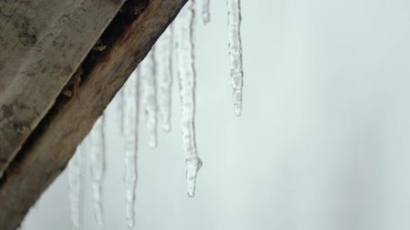 saçak : Melting icicles in the spring under the roof. Spring melting of ice. Stok Video