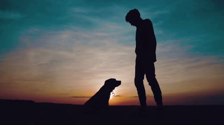 koppintás : A guy in a sweatshirt with a hood dances in front of the dog at sunset in the field.
