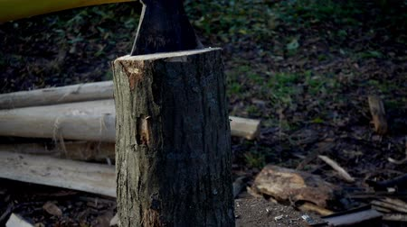 podsvícení : Wood cutting slows motion. The ax cuts a stump close up of a slow motion.