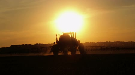 weeding : Tractor spraying chemicals in a field at sunset. Fertilizer application in the field of corn at sunset of the day.