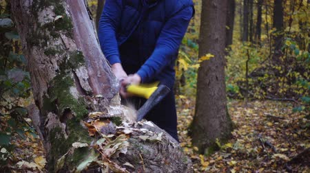 топор : Closeup portrait of a forester, legs, ax, shoes. Close-ups of a man in the forest.