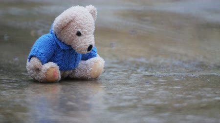 peluş : Abandoned toy bear in puddle in the rain. Old toy bear forgotten by the child in the park.
