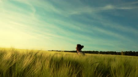 aydınlatmalı : The girl happily walks through a wheat field. A young woman whirls in the field at sunset.