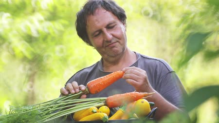 cukkini : Male farmer with a basket of fresh vegetables. A man eats fresh vegetables, tomato, carrots, cucumber. Stock mozgókép