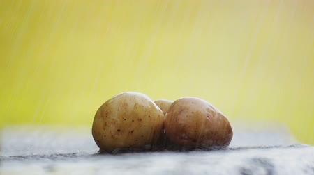 elâ : Fresh potatoes on the table under running water.