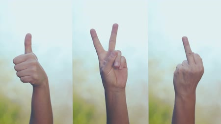 dois objetos : Set of videos, female hand showing gestures. Stock Footage