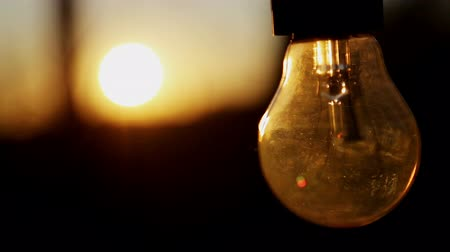 Light bulb in the setting sun. The setting sun shines through a light bulb.