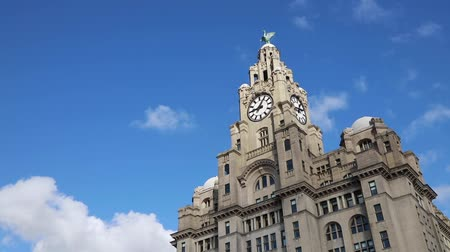 zegar : Liverpool, UK - October 30 2019: View of the iconic Royal Liver Building in Liverpool, UK