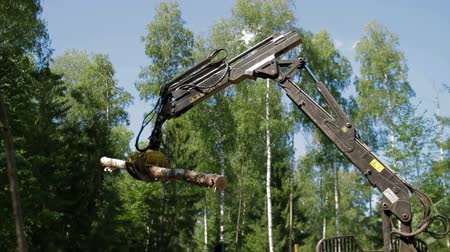 fatörzs : Mechanical Arm loads tree trunks in forest