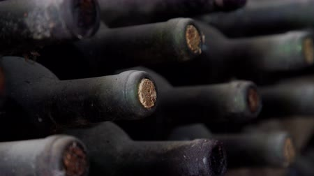 dionysus : Old Bottles of wine in traditional wine cellar Stock Footage