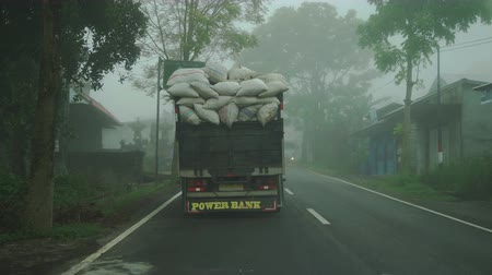 hajózik : Bali, Indonesia - October, 2017: Point of view Fog on a country road in forest Stock mozgókép