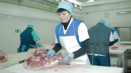 açougue : Russia, Kungur - May 2017: Butcher Cutting Pork Meat in Meat Factory Vídeos