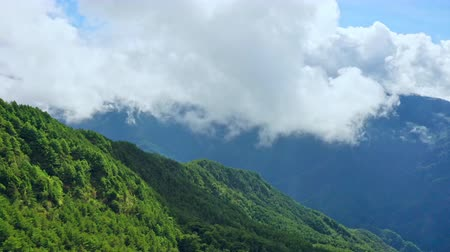 Panorama view of drone flying toward through the beautiful Mt.Hehuan, Hehuanshan, in Taiwan Central Mountain range, with cloud sea, aerial view. Wideo