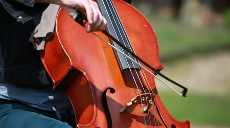 jogadores : Woman plays on the cello on private open air concert. The background is blurred. Vídeos