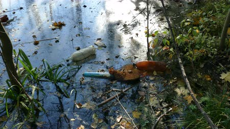 contaminação : Floating Plastic bottles in a polluted pond water