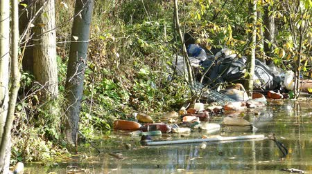 çevre kirliliği : Floating Plastic bottles in a polluted pond water