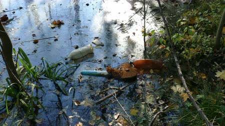 снижение : Floating Plastic bottles in a polluted pond water