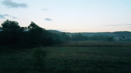 Scenery of green fields with trees from the window of a passenger train
