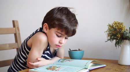 шесть : charming 6 years boy reading the book and eating dried fruits